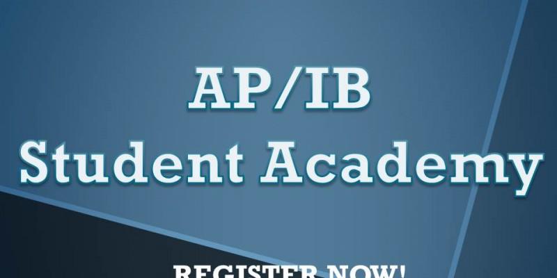 AP&IB Academy